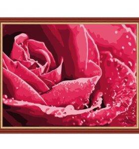 Раскраска по номерам.Роза