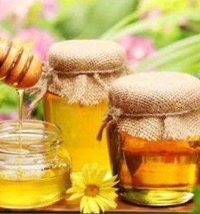 Подаётся мёд. Перга. Пыльца