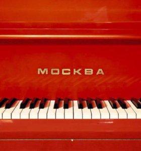 Репетитор по музыке, роялю, фортепиано, ритмике