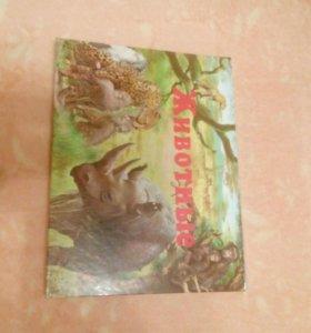 """Книга детская """"Животные"""""""