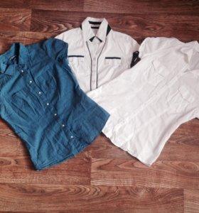 Рубашки Zara/modis