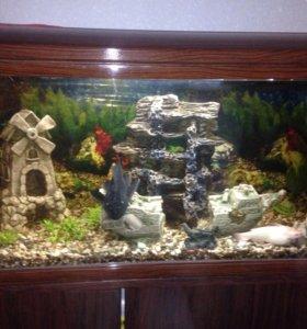 Аквариум с рыбами и аксессуарами, фильтр, тумба