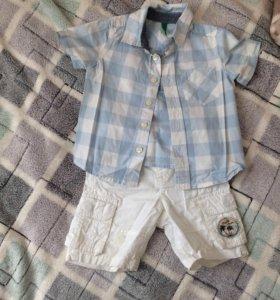 Шорты +рубашка ( трикотаж)