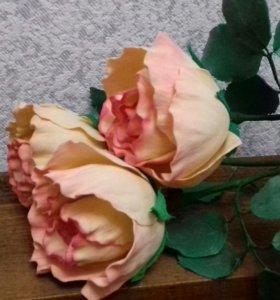 Роза Дольче Вита