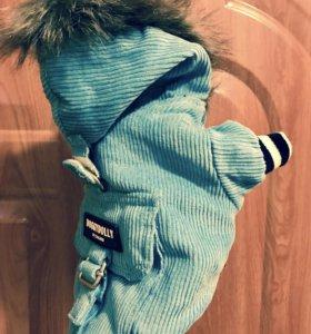 Курточка утеплённая для маленьких собачек