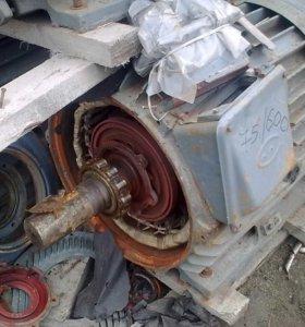 Замена подшипников электродвигателей с выездом