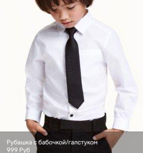 рубашка с галстуком HM