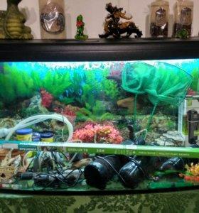 Продам аквариум панорамный 205 литровый