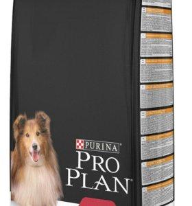 PRO PLAN MEDIUM ADULT - корм для собак