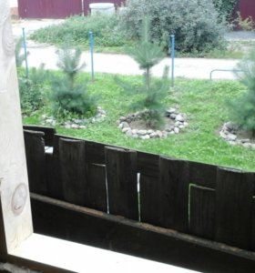 Обсада (окосячка) проемов в деревянном доме