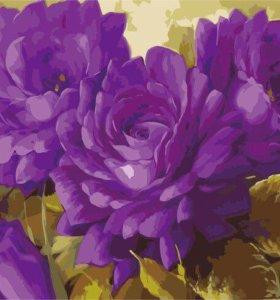 Раскраски по номерам.цветы