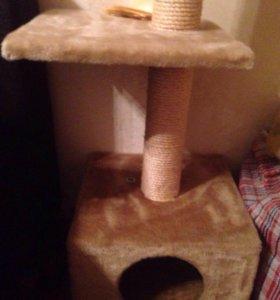 Когтеточка и домик для кошек