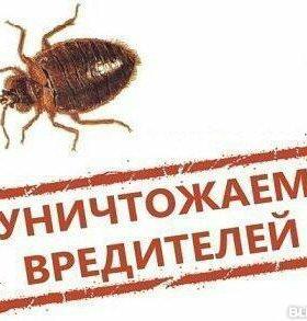 Истребление насекомых