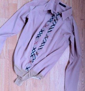 Рубашки,блузы