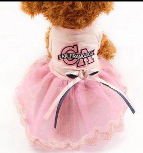 Платье на собачку