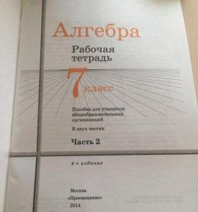Рабочая тетрадь по алгебре 7 класс