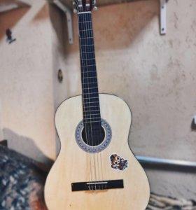 Акустическая гитара (6-ти струнная) + чехол