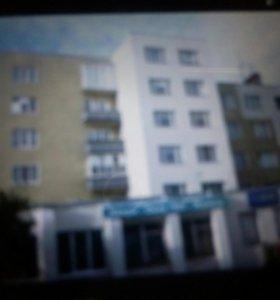 Квартира 1-я