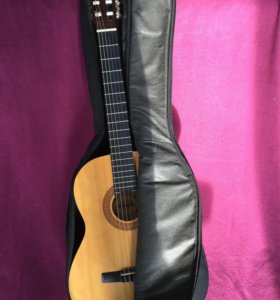 Гитара вместе с чехлом