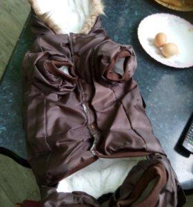 Новый! Плотный и очень теплый костюмчик для собаки