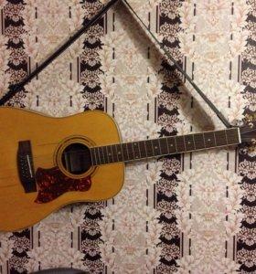 Гитара 12 струнная Augusto