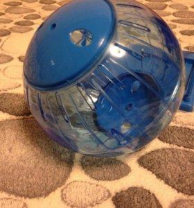 Прогулочный шар для грызуна