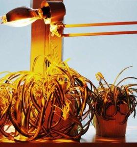 Фитосветильники для растений и рассады ДНАЗ 150 Вт