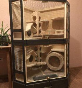 Угловая витрина для шиншилл / дегу