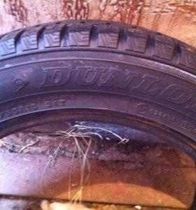 Dunlop 205/55 R16 1 шт зима шипы