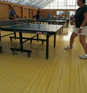 Настольный теннис в Анапе