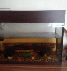 Продаю аквариум на 100литров