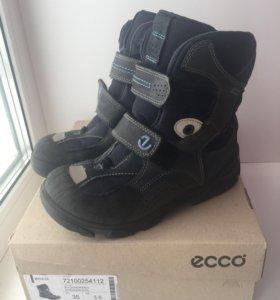 Ботинки ECCO 35