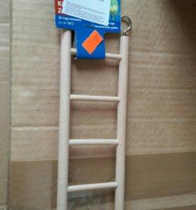Лестница для попугаев