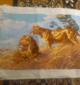 Львы в Саванне