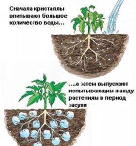 Гидрогель для растений и семян в землю
