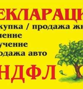 Декларации + заявление 300р