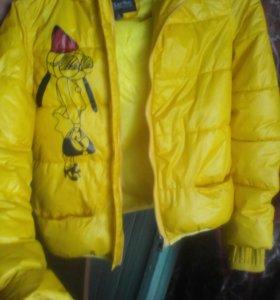 Курточка весна,осень