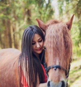 Фотосессии с лошадью