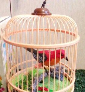 Игрушка птица в клетке