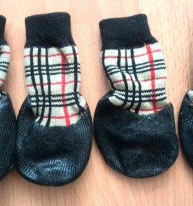 Носочки для собаки