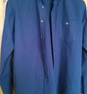Рубашка Lacoste синяя в полоску