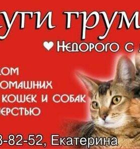 Стрижка собак и кошек.