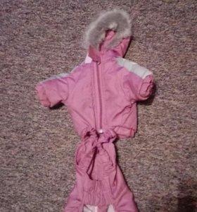 Одежда для йоркширского терьера,девочка