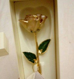 Натуральноя роза в золоте 24k(gold)
