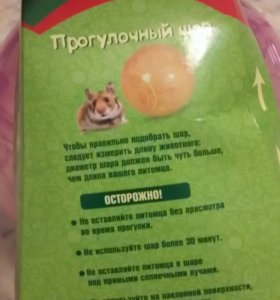Прогулочный шар для грызунов