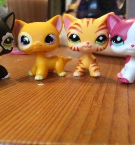 Кошки littles pet shop