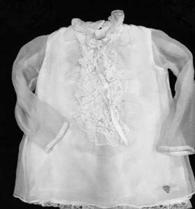 Блузка Cavalli