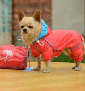 Ветровка комбинезон для собачки