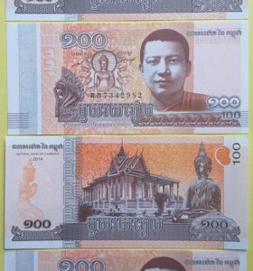 Камбоджа 100 рублей 2014 год