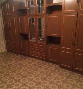 Сдаю 1- комнатную квартиру в Октябрьском районе
